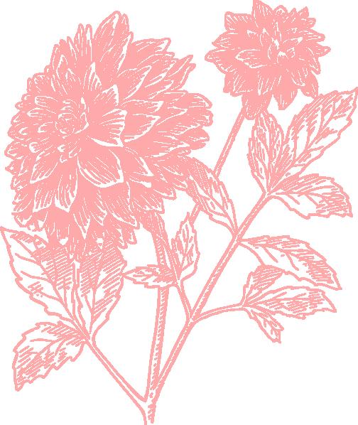 Pink Dahlia Flower Clip Art