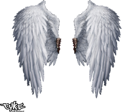 angel wings psd - photo #3