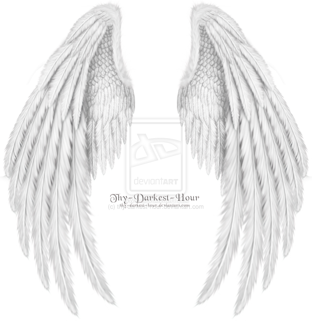 Angel Wings Side PSD Images - Feather Angel Wing Designs, Angel Wings ...