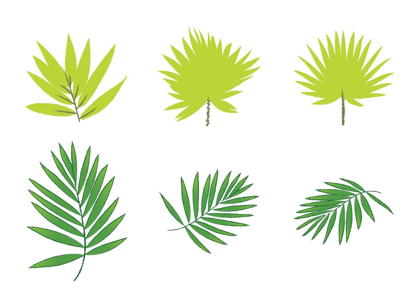 18 Palm Leaf Vector Art Images Palm Tree Vector Free Vector Palm Leaves And Palm Tree Silhouette Clip Art Free Newdesignfile Com 115,000+ vectors, stock photos & psd files. newdesignfile com