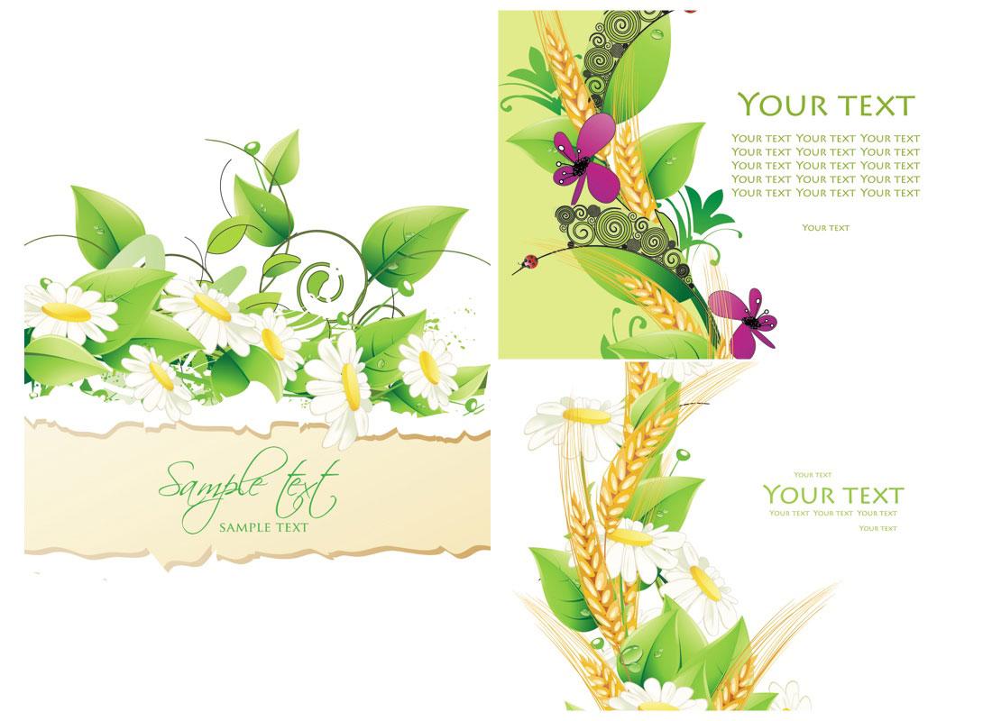 Summer Invitation Cards