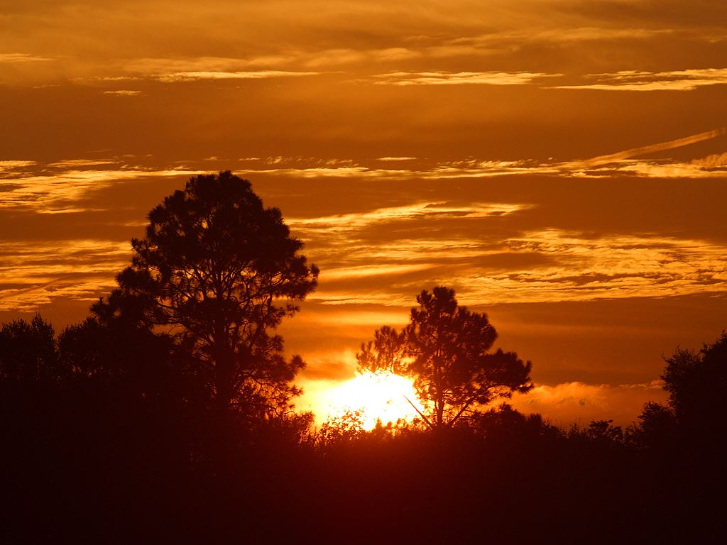 Sunrise Pictures Free Domain
