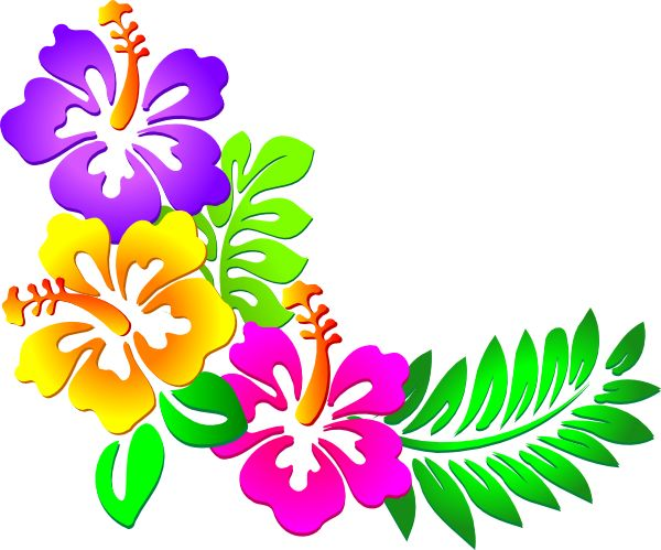 14 Hawaiian Flower Vector Art Images