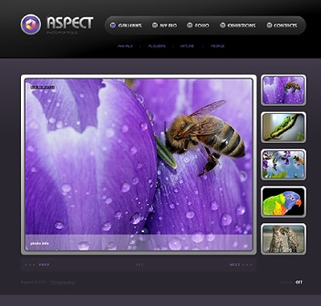 Adobe Flash Website Templates Free