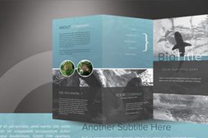 Adobe Photoshop Brochure Template