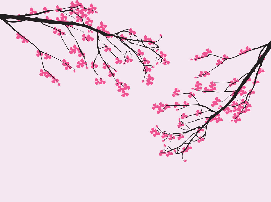 12 Cherry Blossom Vector Images