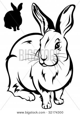 15 Vector Black And White Bunny Images