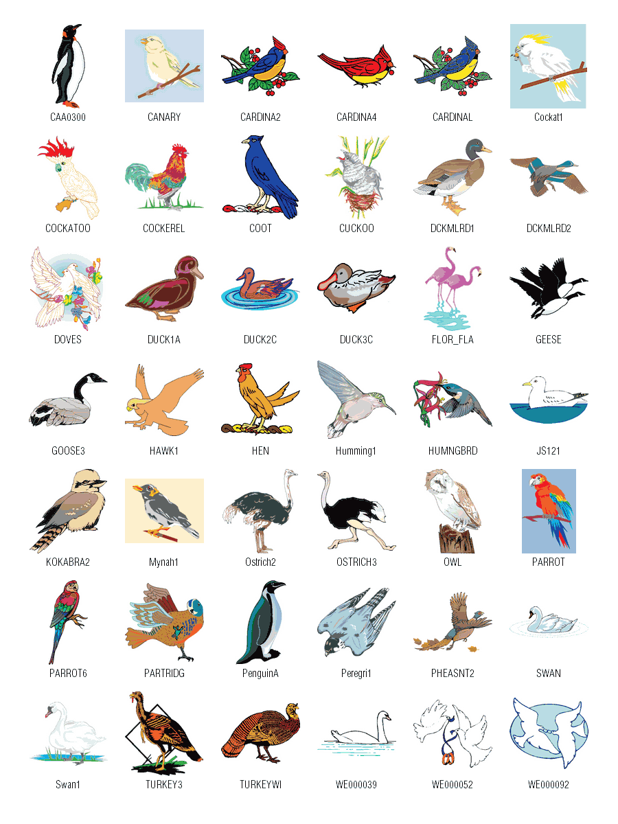16 Birds Free Vector Art Graphics Images