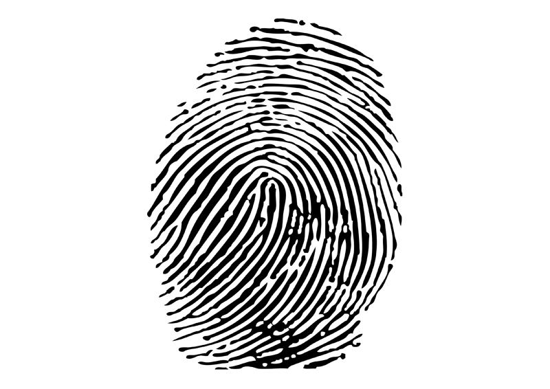 16 Fingerprint Vector Image EPS Images