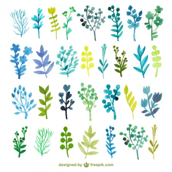 9 Watercolor Leaves Vector Images