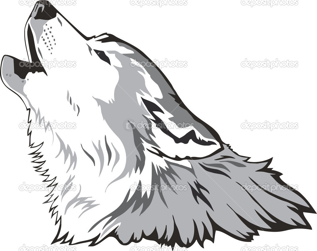 12 Wolf Head Vector Images - Wolf Head Drawing Side View ...