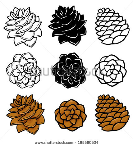 14 Free Vector Holly Pine Cone Images