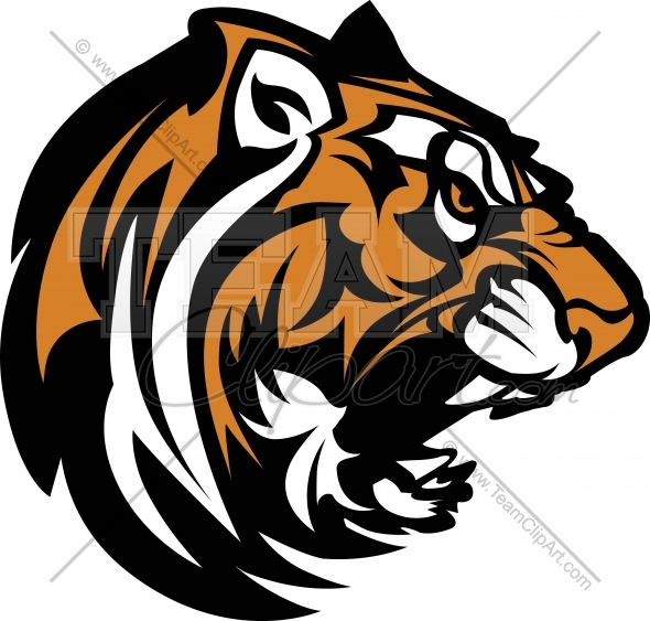 12 Tiger Logo Vector Art Images