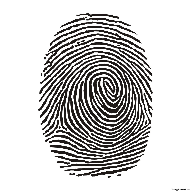 16 Fingerprint Graphic Vector Images
